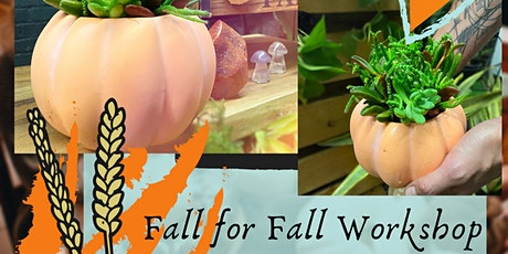 Fall For Fall Workshop  - Pumpkin Succulent Planters (5pm) tickets