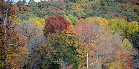 WINGS: Autumn Hiking tickets