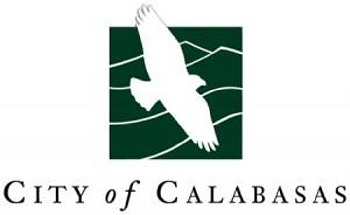 2020 Calabasas Film Festival Drive In image