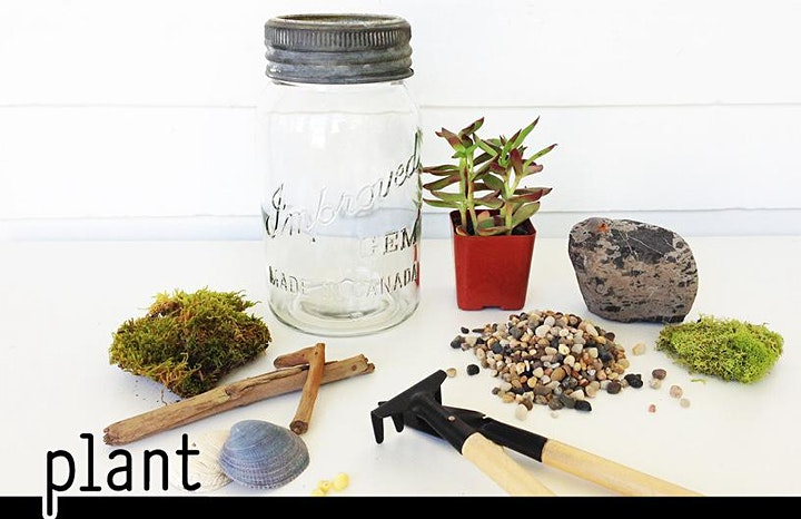 Virtual Valentine's DIY Terrarium Workshop image