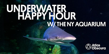 Underwater Happy Hour w/ the NY Aquarium tickets
