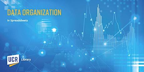 Data Organization in Spreadsheets tickets
