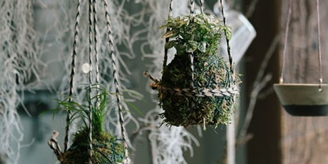 Online Workshop: How to Create a Hanging Moss Ball (Kokedama) tickets