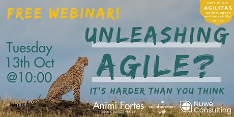 "Unleashing Agile - tackling the biggest challenges faced in ""agile"". tickets"