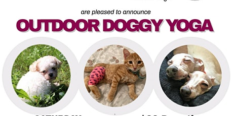 Outdoor Doggy Yoga tickets