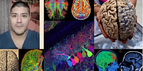 Neurobiología con Paul entradas
