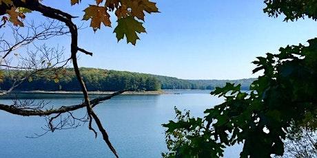 Fall Forest Bathing Walk tickets