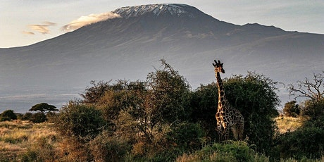 TANZANIA – Kilimanjaro with Safari & Zanzibar