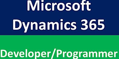 Microsoft Dynamics 365 Training - Developer tickets