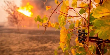 WINE CLASS: West Coast Wildfire Support, with Jill of DomaineLA tickets