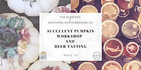 Succulent Pumpkin Workshop and Beer Tasting tickets