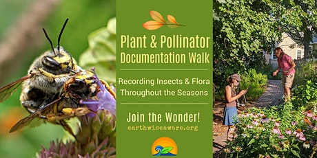 Plant & Pollinator Documentation Walk tickets