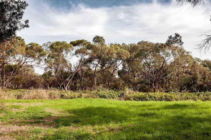 Wirrarninthi (Park 23) Environmental Education Trail image