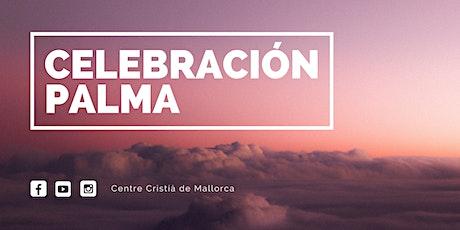 2ª Reunión CCM (12 h) - PALMA entradas