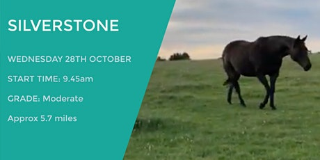 SILVERSTONE BIRDIE WALK | 5.7 MILES | MODERATE | NORTHANTS tickets
