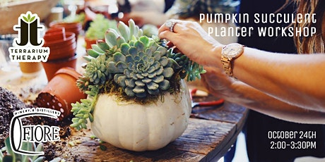 In-Person - Pumpkin Succulent Workshop at Fiore Winery and Distillery tickets