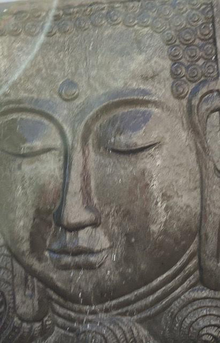 30 min Healing Meditation, Social Presencing Theatre 2
