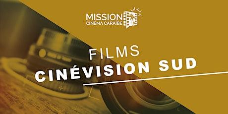 Films CinéVision Sud du 21 au 22  janvier 2021 billets