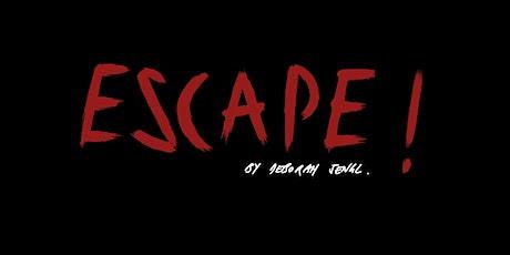 Escape! by Deborah Sengl   ab 14 Jahren Tickets