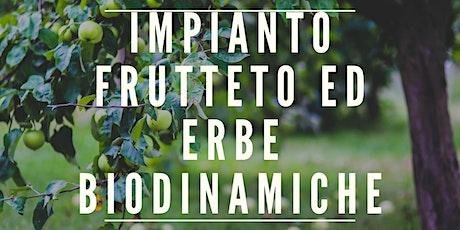 IMPIANTO FRUTTETO ED ERBE BIODINAMICHE biglietti