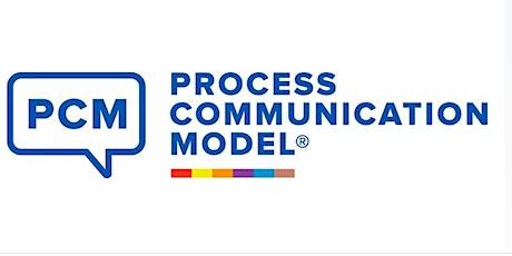 Process Communication Model®- Niveau 1 - 5 am 7 am + pm 8 pm 13 am+pm oct entradas