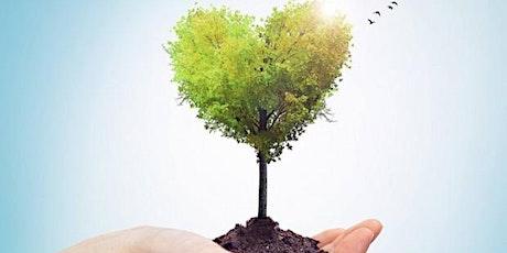 Webinar Emplea: Ecología emocional en la búsqueda de empleo. entradas