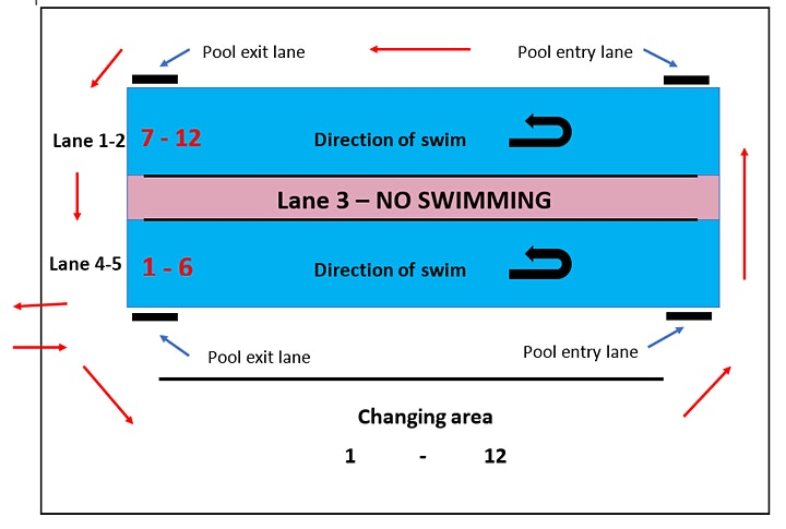 Tri-trained swim session image