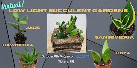 Low Light Succulent Garden - VIRTUAL! tickets