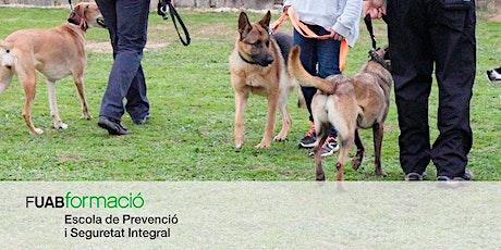 Sesión info: Curso-Posgrados en Instrucción de Unidades Caninas de Trabajo entradas