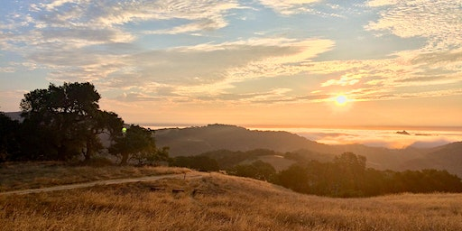 A Mental Wellness Tour of Open Space Preserves