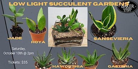 Low Light Succulent Garden tickets