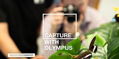 Capture with Olympus: Macro (Live Stream)
