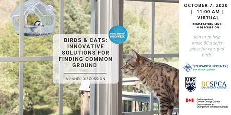 Birds and Cats: Innovative Solutions for Finding Common Ground tickets
