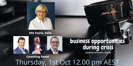 Business Opportunities During Crisis tickets