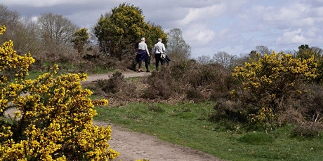 Timed entry to Kinver Edge and the Rock Houses (28 Sept - 4 Oct) tickets