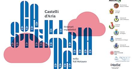 Castelli D'Aria -Fabiana Ciampi in concerto a Montemaggiore al Metauro biglietti