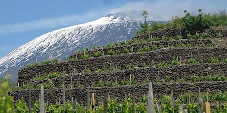 Hellbound Wine School: Volcanic Wines of Sicily tickets