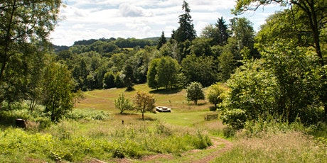 Timed entry to Winkworth Arboretum (28 Sept - 4 Oct) tickets