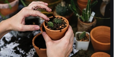 Free Beginners Workshop  to Happy House Plants: How to Care 4 Indoor Plants tickets