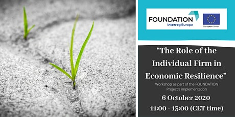 The Role of the Individual Firm in Economic Resilience workshop tickets