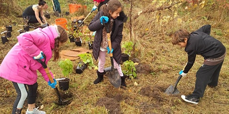 Native Tree and Shrub Planting at Colonel Sam Smith Park - Whimbrel Point tickets
