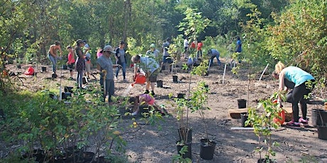 Fletchers Creek SNAP Community Tree Planting tickets
