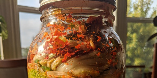 Food Fermentation for Beginners: Kimchi & Sauerkraut