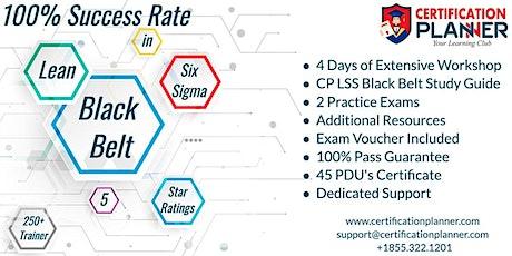 Lean Six Sigma Black Belt(LSSBB) Certification Training in Edison tickets