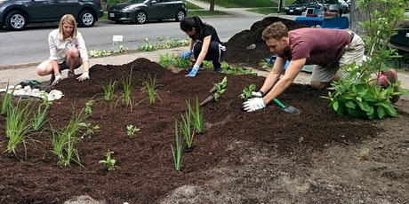 A beginner's guide to building a rain garden tickets