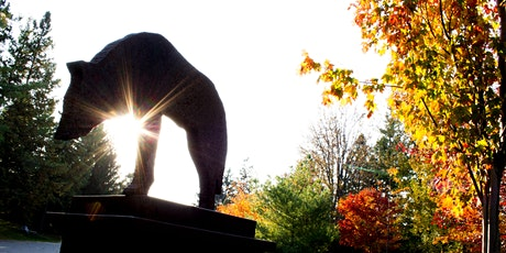 Reflections on Light and Shadow: Art & Nature Meditation Outdoor Workshop tickets