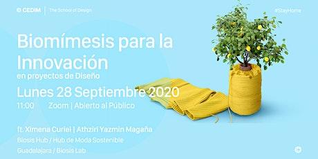 → Biomímesis para la innovación en proyectos de diseño boletos