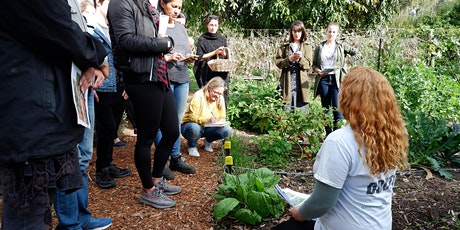 Soil Care & Composting Workshop @ Girrawheen Community Garden