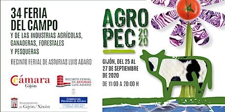 AGROPEC 2020 entradas