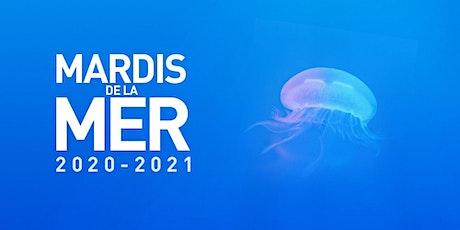 Les Mardis de la Mer 2020-2021